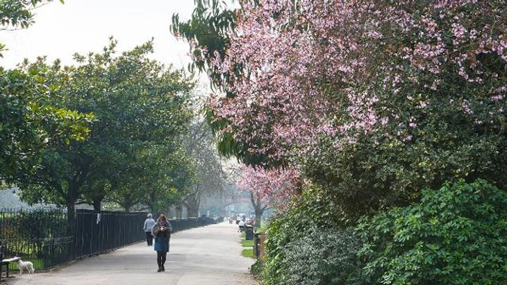 Meet your personal trainer in Fulham for a run around Ravenscourt Park
