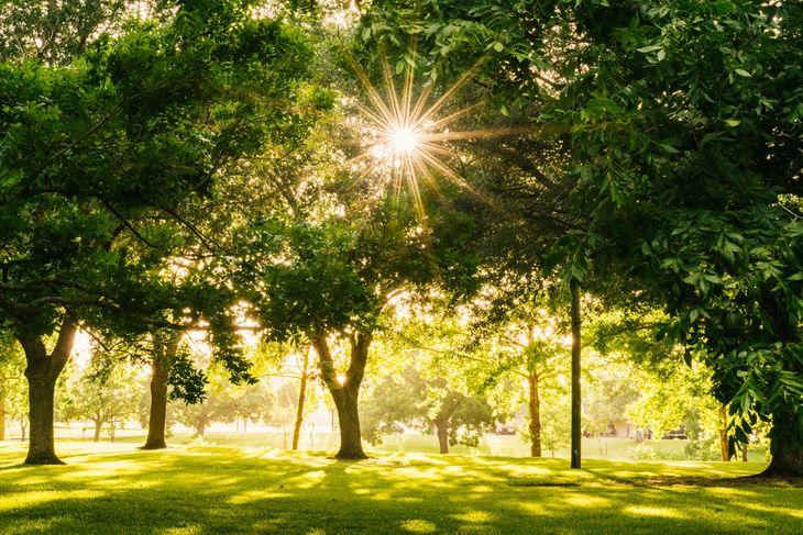 This park is a great place to meet your personal trainer in Kensington.