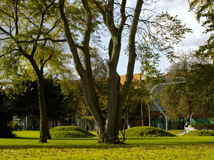 With loads of workout equipment, Normand Park is an ideal place to meet you personal trainer in Fulham.