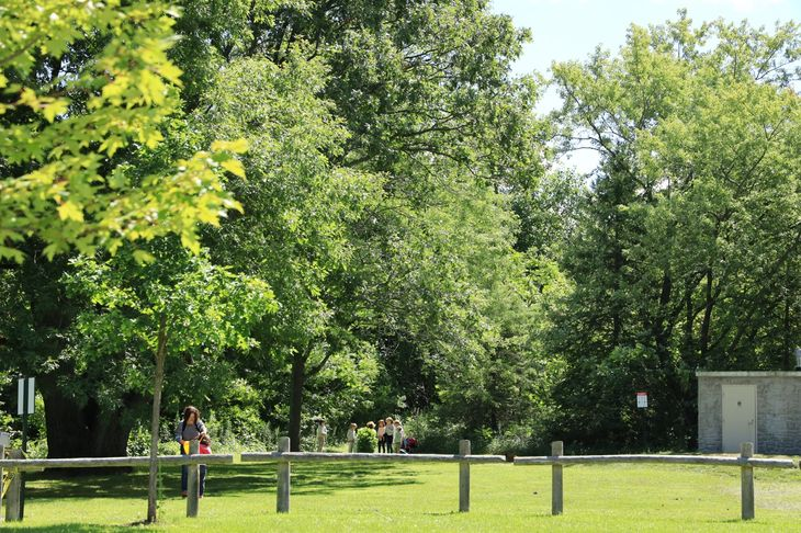 A personal trainer in Kensington walking in park.