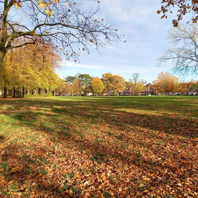 With loads of parks like this, there are loads of great places to meet your personal trainer in Croydon.